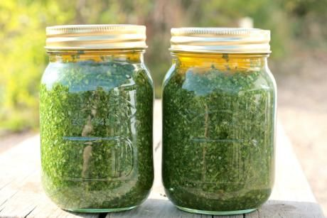 How to make Persillade -parsley preserved with garlic, oil, lemon juice - fanstastic store cupboard ingredient that keeps for up to 6 months!