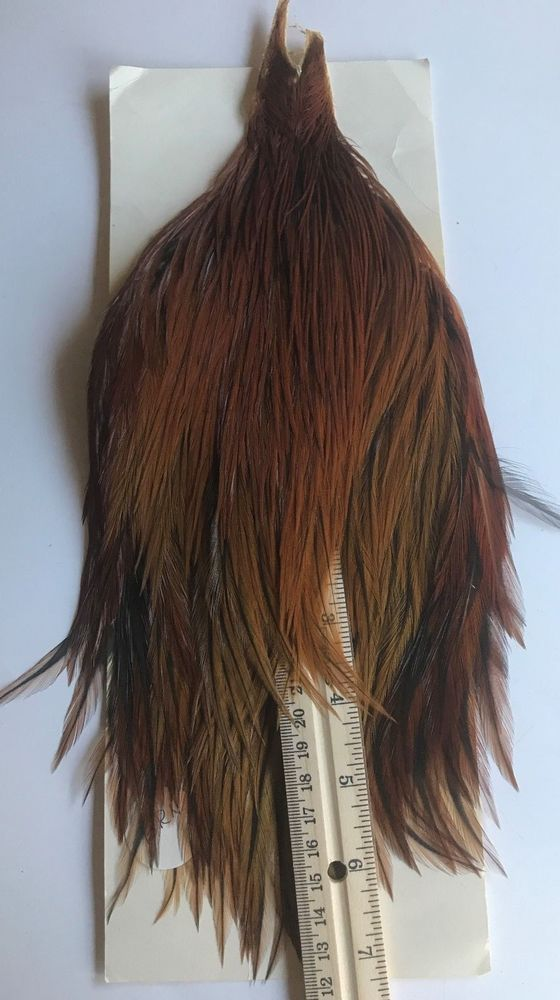 Ginger Dry Fly Hackle / Fly Tying Feathers, fly tying supplies, feathers, hackle #Metz