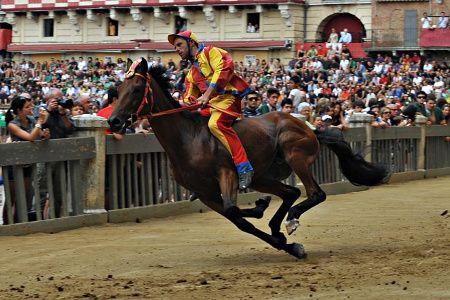 a jockey racing for Contrada della Chiocciola