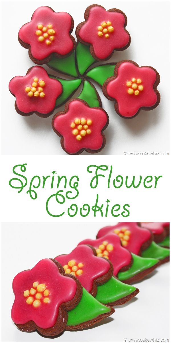 Simple chocolate sugar cookies are given a makeover and transformed into pretty little SPRING FLOWER COOKIES. Really easy and fun to make! From cakewhiz.com