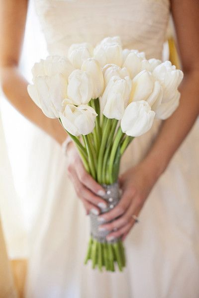 Simply elegant! This wedding bouquet of ivory tulips would add sweet romance to your wedding day! {Amanda Lloyd Photography}