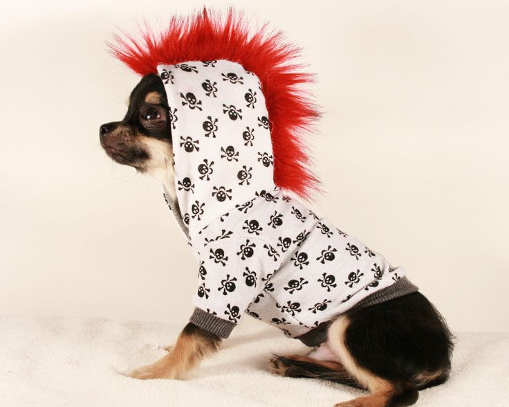 Tiny Teacup Punk Mohawk Skull And Bones Chihuahua Hoodie