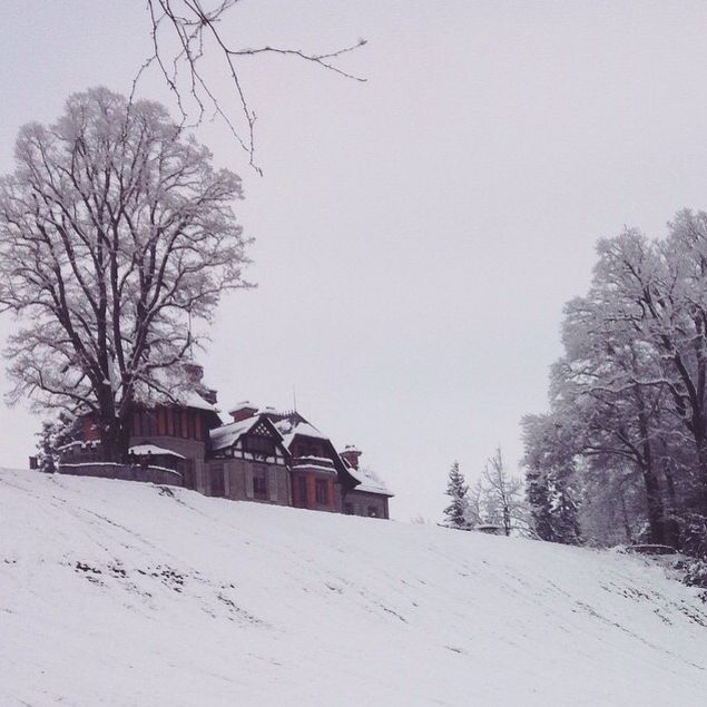 #diary #rivkahyoung #16022015 #luzern #swiss #konservatorium #snow #winter #white #greysky #hill #tree #tristesse