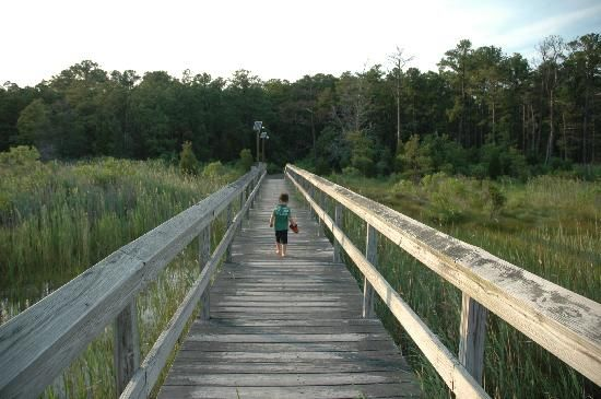 Point Lookout State Park:-The Fishing Pier