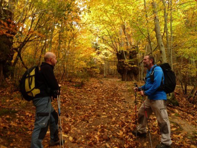 El Montseny en otoño