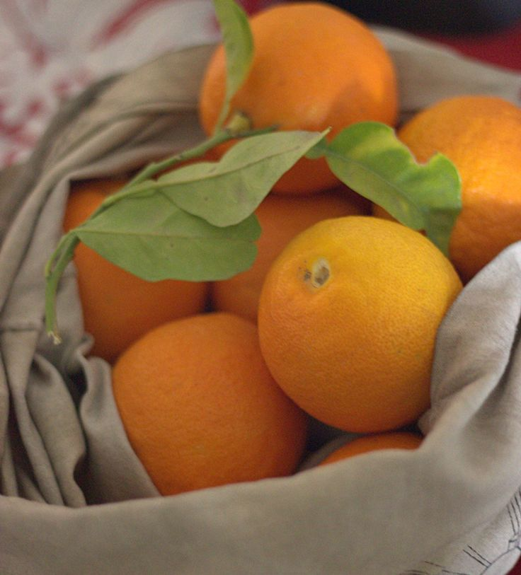 These are bitter oranges that I picked from a nearby tree. I love their scent and what can be made of them,