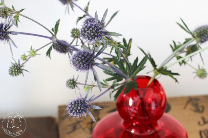 Oravanpesä | Sinipiikkiputki Eryngium planum & Marimekko Flower -maljakko
