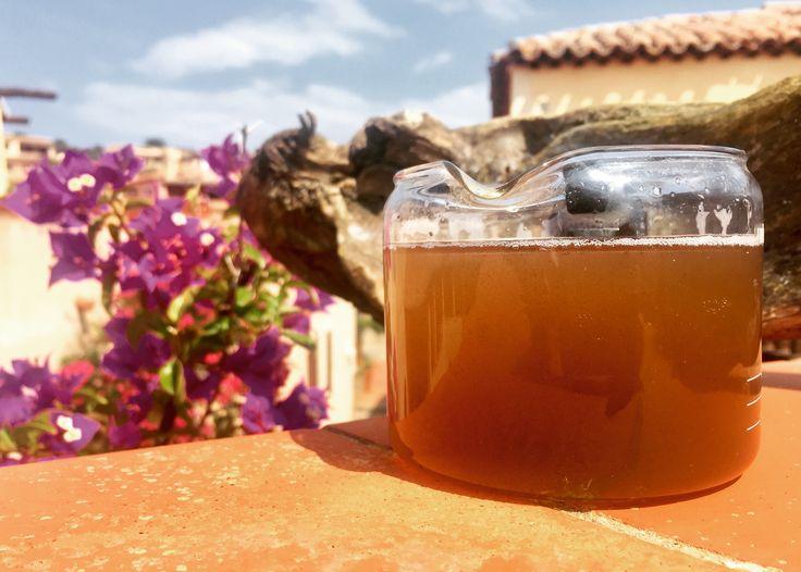Il nostro HumuSS-Tea, preparato con metodo dal nostro HumuSS