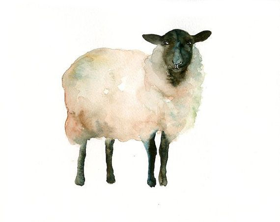 SHEEP Original watercolor painting 10X8inch by dimdi on Etsy, $25.00