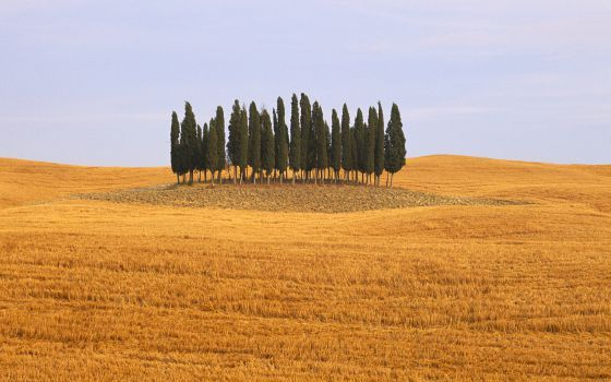 Siena, Italy How to fall in love with La Toscana - 10 towns to discover there