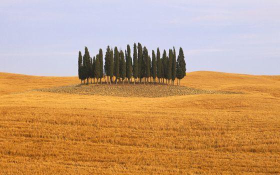 Cómo enamorarse de la Toscana - El Viajero - El País