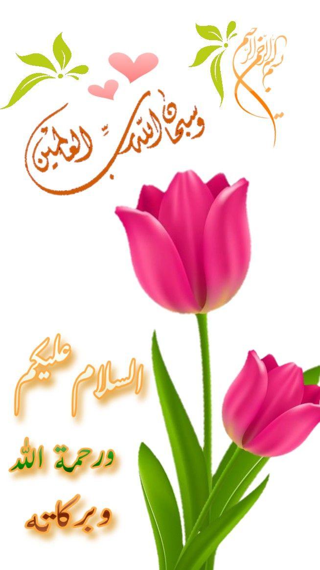 Pin By Safia Habib On السلام عليكم صباح الخير Good Morning Coffee Good Morning Images Good Morning Msg