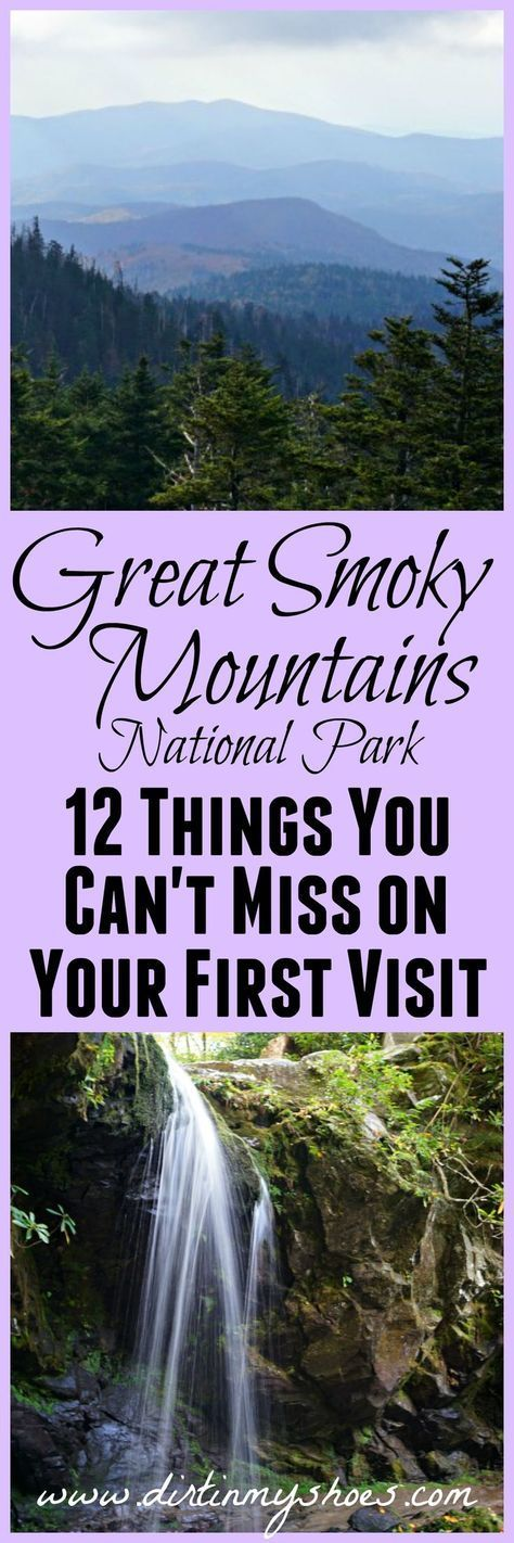 This is the best list of things to do in Great Smoky Mountains National Park -- written by a former park ranger!