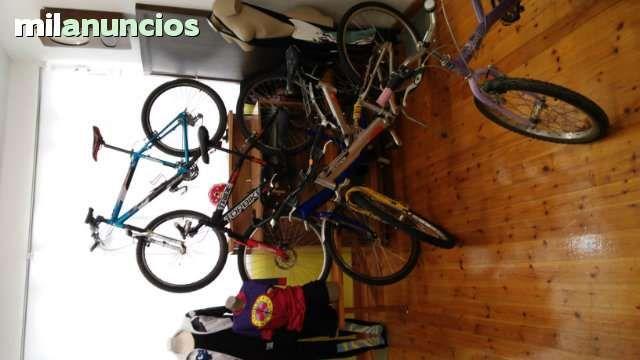 . Encuentre la bicicleta que busca!  Revisadas y listas para ser utilizadas.  Somos tienda especializada en el deporte, no lo dude y preguntenos sin compromiso:  carretera monta�a paseo ni�os
