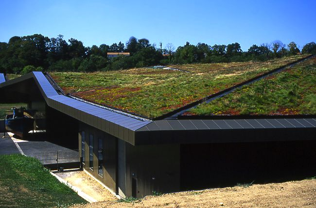 Green Roofs: Combining Aesthetics with Ecology
