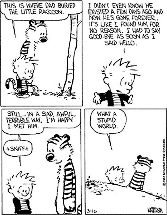 The 25 Best Best Calvin And Hobbes Ideas