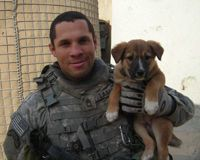 Help us reunite soldiers with their pets!: Military Dogs, Military K9, Gordon Mcdonald, Pets Animals, Canine Heroes, Cute Animals, Military Work, Legal Care, Work Dogs