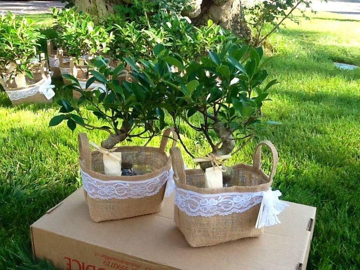 Bomboniera Ecologica borsetta in juta e pizzo con bonsai sposa romantica e green