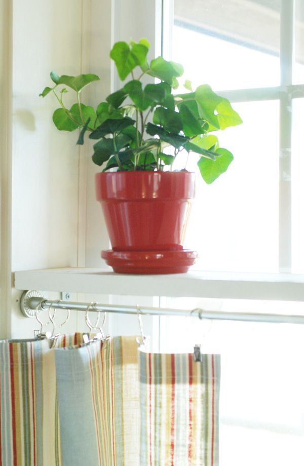 Install simple shelves in the middle of a window - provides added shelving and a topper for cafe curtains below.