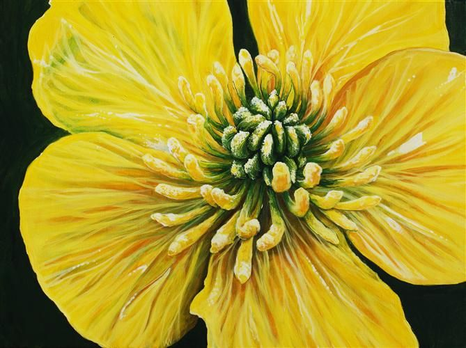 "Original art for sale at UGallery.com | Perennial by Venus Winston | $750 | acrylic painting | 18"" h x 24"" w 