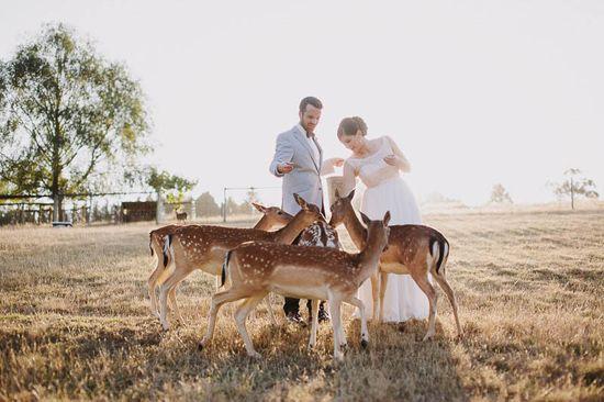 Kate and Nicks Gum Gully Farm Wedding  |  Polka Dot Bride