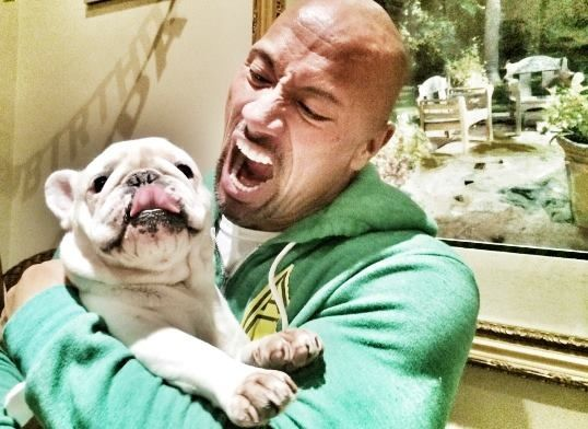 Dwayne Johnson the rock and his dog Pierre