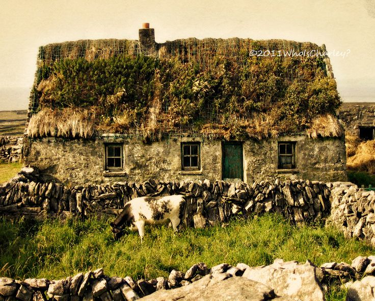 THATCHED ROOF COTTAGE Ireland Photo Fine Art by WhoIsCharley