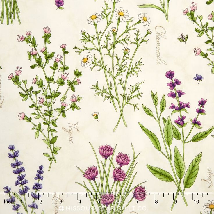 Thyme with Friends - Botanical Herbs Natural Yardage - Kris Lammers - Maywood Studios