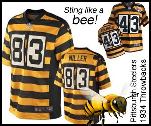 About | Steelers Bars in the Steeler Nation