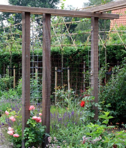 Roos aan pergola tuin pinterest pergolas - Hout pergola dekking ...