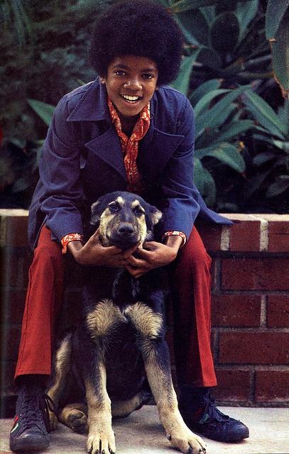 Michael Jackson & Who is apparenlty his dog!!! So cute!! <3