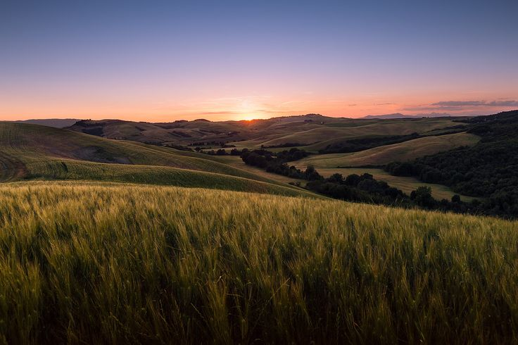 Volterra, Tuscany. #Beautiful #Beauty #collina #Dreamy #campi #Earofwheat #Field #fineart #Fields #fineartphotography #Glow #Glowing #Hills #LandscapePhotography #MarcoRomani #Italy #Gentle #Landscape #SunRays #Sunset #Tuscany #Sunstar #SoftLight #Volterra #marcoromaniphotography #outdoorphotography #paesaggio #prints #Soft #Waves #Summer #pendici #Toscana #Nikon #Feisol #Nikkor #NikonD700