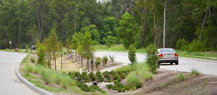 """A specially designed median is being used for flood control on Birnamwood Drive in Spring. Known as a """"bioswale,"""" it uses plants, rocks and gently sloped landscaping to reduce flooding and naturally filter rainwater before it reaches the bayous. Photo: Nick De La Torre / © 2012  Houston Chronicle"""