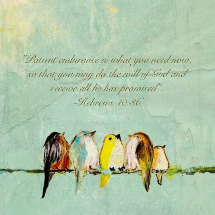 Hebrews 10:36 God give me patient endurance!