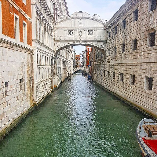 Highlights of #Venice 😍