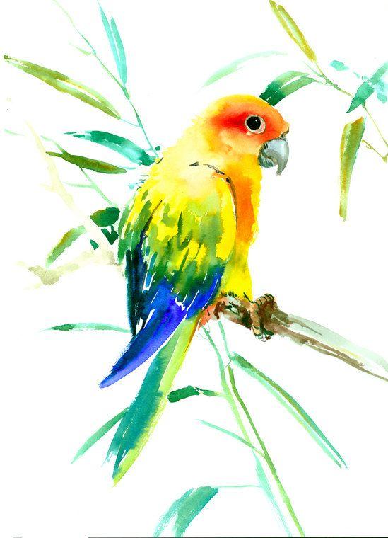 Sun Conure, Parakeet original watercolor painting, 15 x 11 in, rainbow bird art, pets, bird art, parrot lover