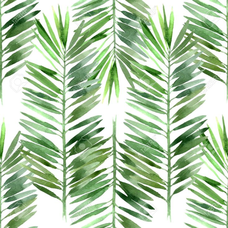 printable palm tree leaf pattern - Google pretraživanje