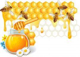 векторная графика, еда, пчелы, мед