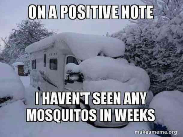 25 Funny Winter Memes Quotes About The Winter Solstice To Distract You From The Bitter Cold 25 Funny Winter Camping Quotes Funny Funny Jokes Funny Quotes