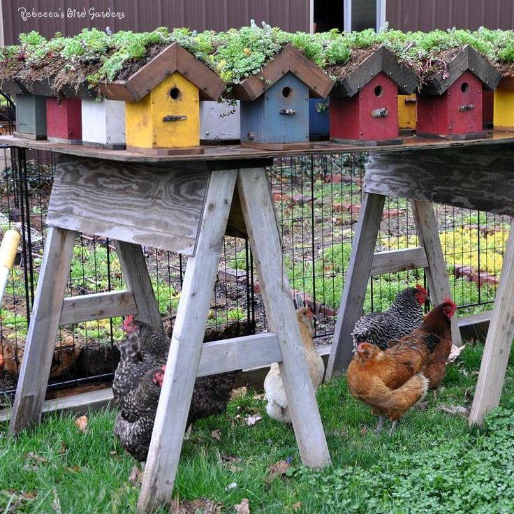 17 Best Images About Bird Gardens On Pinterest Glass