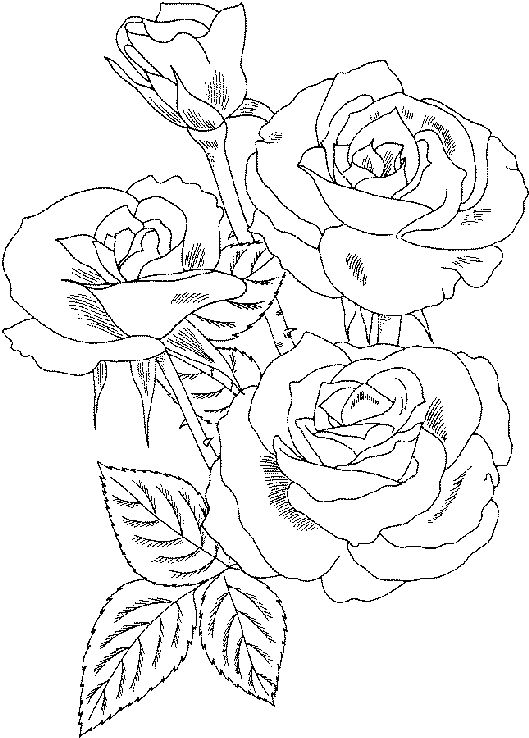 coloring pages for august - photo#31