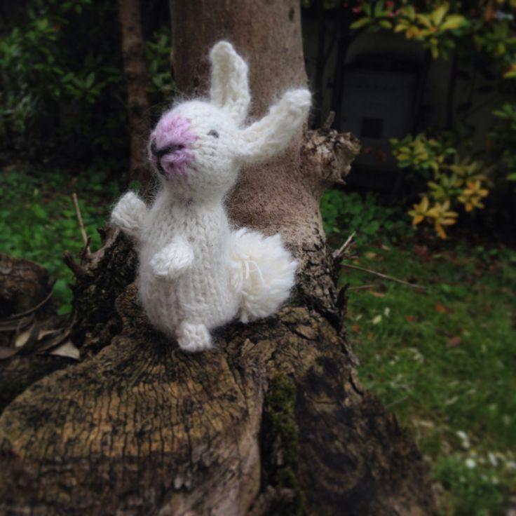 Morbidissimo coniglietto in angora anti stress