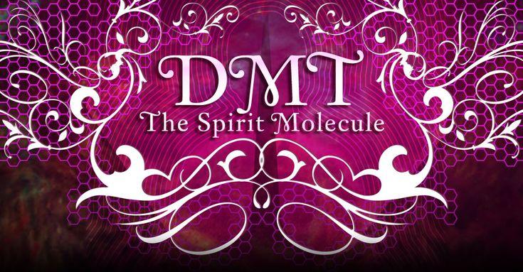 The spirit Molecule