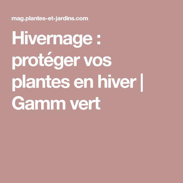 Hivernage : protéger vos plantes en hiver   Gamm vert