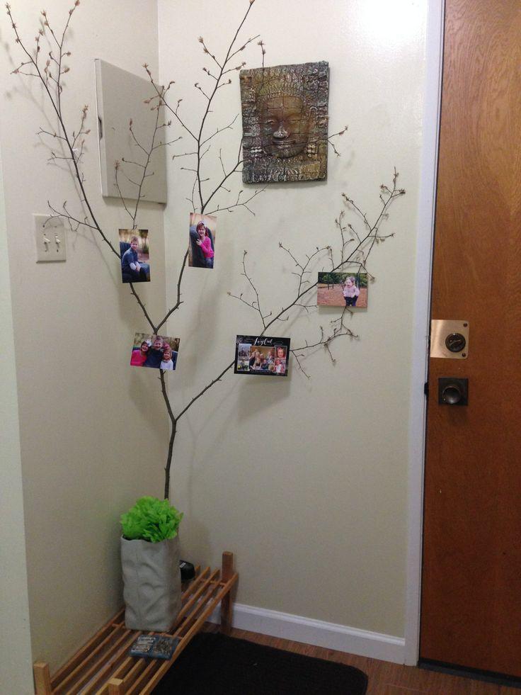 El arbol familiar con ramas secas y fotos.