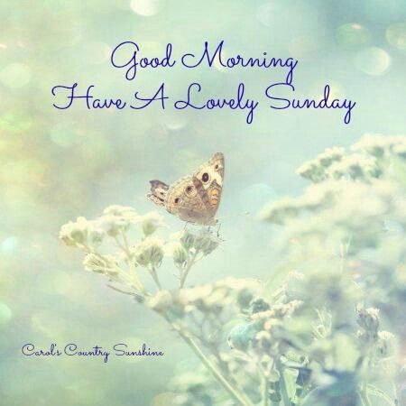 Good morning. Have a lovely Sunday.  HELLO, SAYINGS & QUOTES  Pinterest...