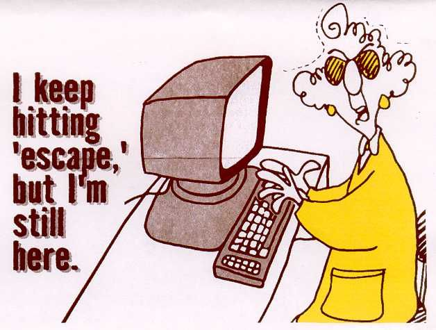 Maxine: Work Humor, Workhumor, Cars Humor, Funny Pictures, Maxine, Funny Stuff, Funny Quotes, Buttons, Feelings