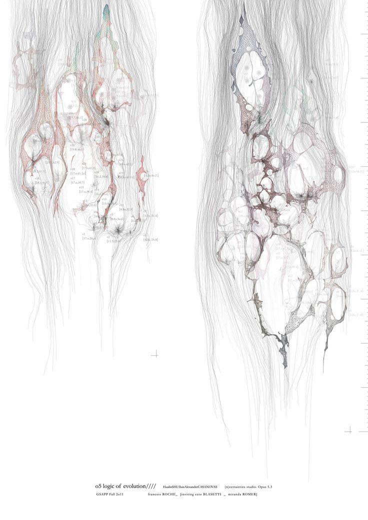 """Logic of Evolution"" from Password _ _ _ _ by Lluis Alexandre Casanovas & Hualin Shi"
