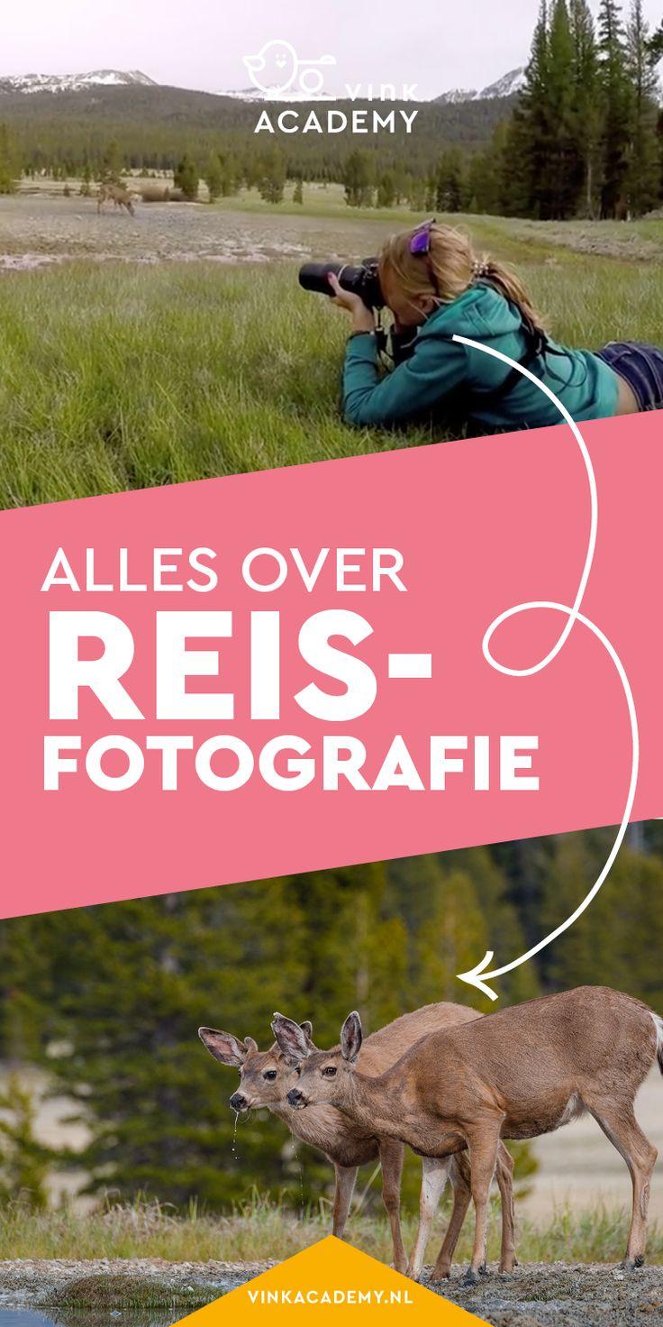 Alles over reisfotografie: leer hoe je mooie dierenfoto's maakt, zoals deze herten in Amerika. Het boek reisfotografie staat boordevol fotografietips en inspiratie voor het maken van mooiere foto's op je vakantie. #reisfotografie #fotografietips