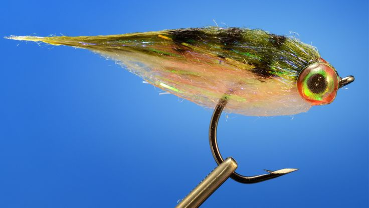 61 best images about baitfish streamer patterns on for Fly fish food